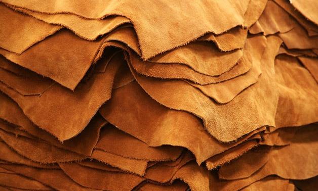 Egypt host Pan African Leather Fair 2020